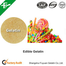 organic edible gelatin , natural additives for confectionary