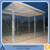 encloser dog run kennels