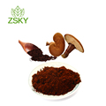 GMP Factory supply Top Quality Reishi Mushroom Extract /Ganoderma Lucidum Extract Polysaccharides