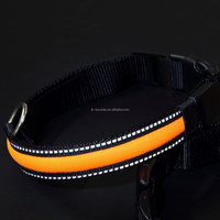 electric LED pet collar, dog collar, flashing collar leashes