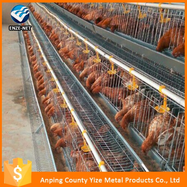 alibaba china market promotional layer chicken coops for sale/poultry cage equipment for laying egg chicken