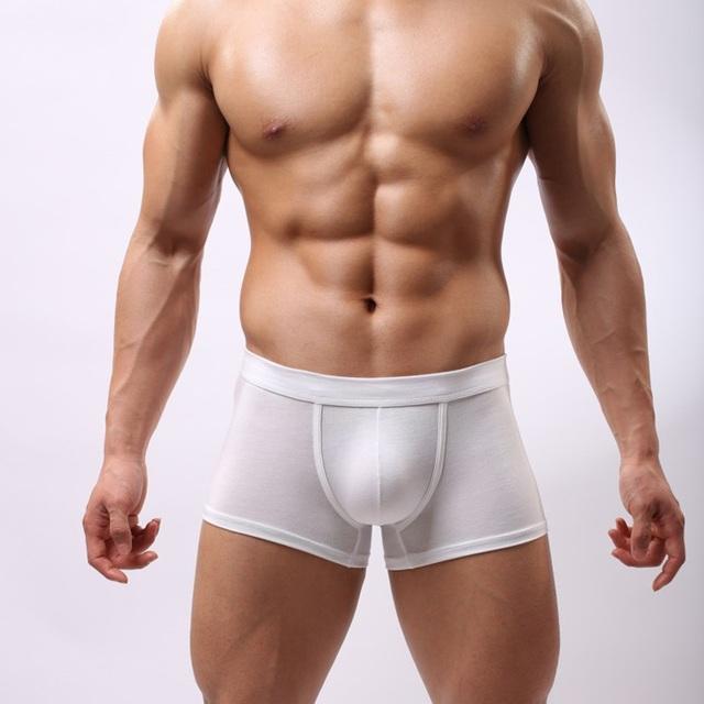 Free Shipping Without Logo Custom Micro Modal Men's Underwear Boxer Man Underwear Sex Modal Penis Cover SC09