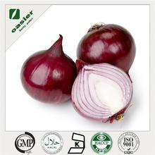 ISO Kosher Halal Cartificate fresh onion export to dubai with good price