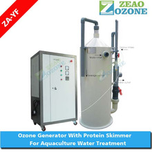 Power free water treatment protein skimmer for sea fish tank