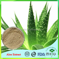 Direct Factory Supply Best Quality Aloe Vera Rhein Extract Powder
