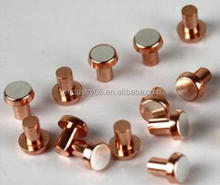Free Samples Bimetal Silver Rivet Electrical Relay Silver Contact Point
