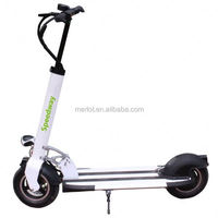 2 wheels folding 10 inch tire 48v cheap three wheel bicycle with Samsung battery in 40km/h