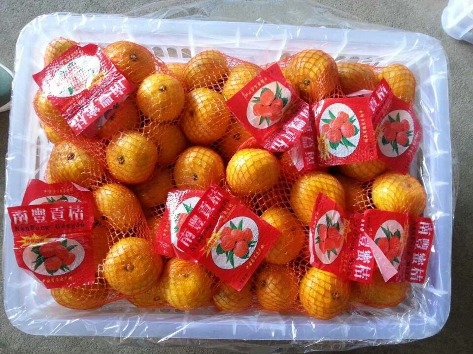 Chinese class 1 fresh fruit navel orange wholesale mandarin