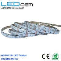 5050 SMD RGB Ws2812B LED Strip , Addressable Flexible Led Rope Light