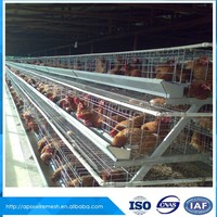 Facory Price chicken egg laying cage