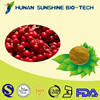 natural pure calm the nerves improving sleep quality schisandra extract powder