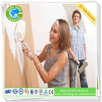 Anti alkali antibacterial interior wall paint primer