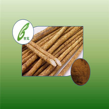 GMP Factory Supply Pure Natural Burdock Root Extract 40% Arctiin