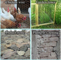 PVC coated / Galvanised Chicken Wire Fencing Hexagonal Wire Mesh for Farming