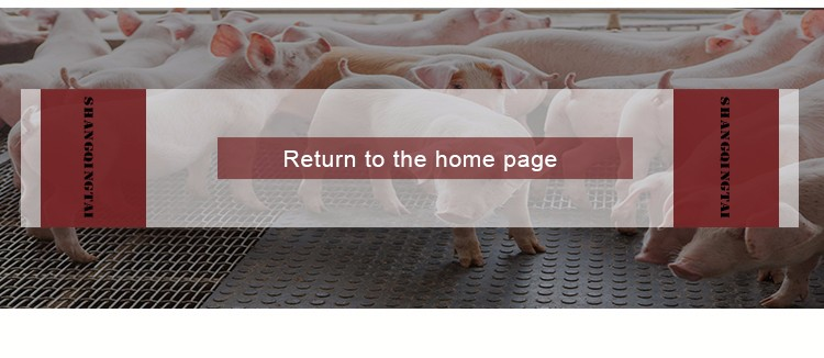 Factory Price Clear Plastic Pig Flooring