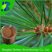 100% pure natural pharmaceuticals/health products/Pine Needle Extract powder/TLC/20:1