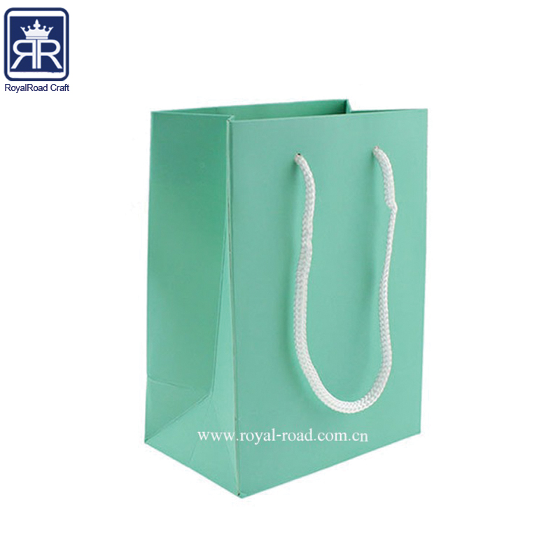 Good Quality Fast Delivery Custom Logo Printed Paper Shopping Bag With Plastic Handle