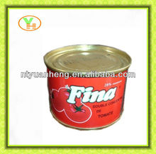 canned food factory for canned tomato paste 70g-4500g