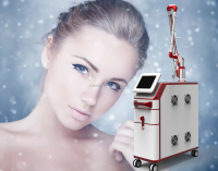 China Supply Professional Remove Tattoo Equipment/nd yag laser