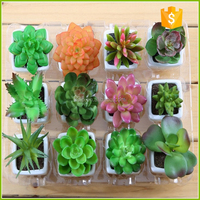 Hot selling artificial mini potted succulent planter