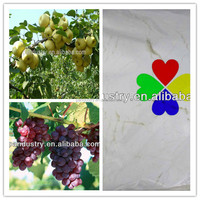 Excellent regulator Fruit and vegetable fertilizer 98%TC Plant growth regulator 6-BA