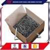 Strong Quality 2 Inch Concrete Common Steel Cap Nails