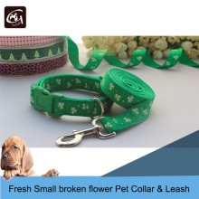 Fresh Small Broken Flower Pattern Pet Collar & Lead