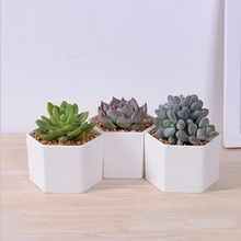 Windowsill adornment hexagon white ceramic indoor pots for succulent