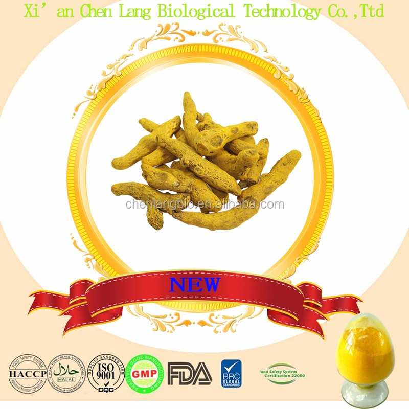 Competitive Price Curcumin Extract Turmeric Powder 95%