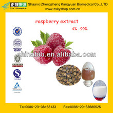 Top Quality Raspberry Seed Extract From GMP Manufacturer