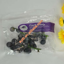 disposable grape(fruit) protection bags