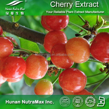 Cherry Berry Extract,Cherry Fruit PE,Cherry Berry Powder