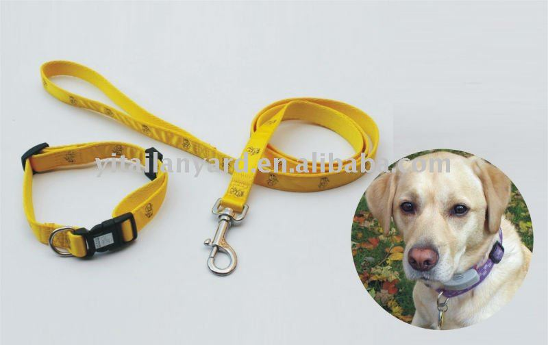 yellow pet leash/dog leash/dog lead/harness