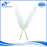Horng Shya Factory Trade Assurance Natural Eco-friendly Dyed Various Type Goose Feather
