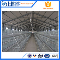 Automatic chicken layer cage chicken egg poultry with great price