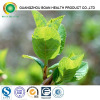 Green Tea Extract Softgel Capsule Healthcare Best Choice