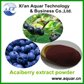 95% Natural supply Anthocyanosides Acai berry extract / Acai berry P.E. / Acai berry powder
