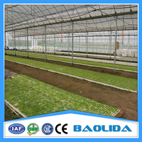 Invernadero Agriculture Greenhouse