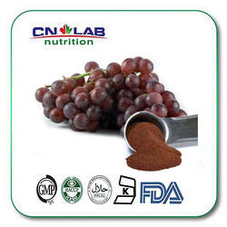 Grape seed extract 95%OPC