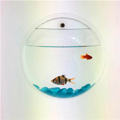 Modern design custom acrylic aquarium wall hanging fish tank
