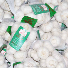 4-6cm new fresh white garlic,normal white garlic,pure white garlic