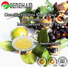 natural foaming agents/ Tea saponin/ Camellia oleifera seed Extract/ China Factory Over 8 Years