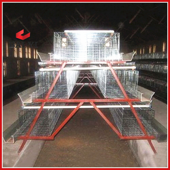 H Type Chicken Cage For Growing Broiler