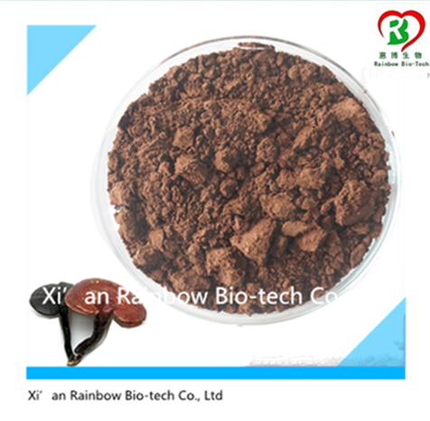 ganoderma lucidum powder extract Hot selling organo gold ganoderma