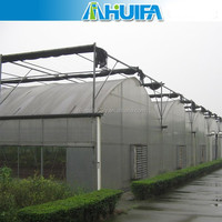 Multi Span Agricultural Exhaust Fan For Greenhouse Accessories
