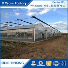 SINOLINKING Best Price plastic film orangery greenhouse Agricultural Production