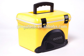Portable 5L Picnic Cooler Box Ice Chest with radio