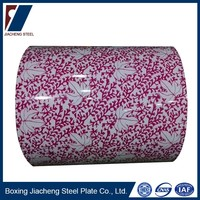 Color coated galvanzied flower steel coil