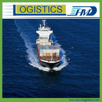 China ocean shipping agent from Shanghai /Ningbo to Tema-- Skype:salesnathan