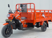 anti-rust 250cc three wheel motor tricycle for cargo delivery with open body